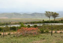 Game Reserve Conservation 3